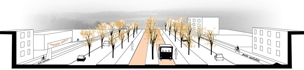 Coupe du profil de la route avec la création de voies de bus en site propre